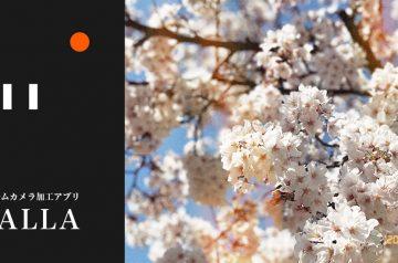 日付け入り写真が撮れる!フィルムカメラ加工アプリ「CALLA」