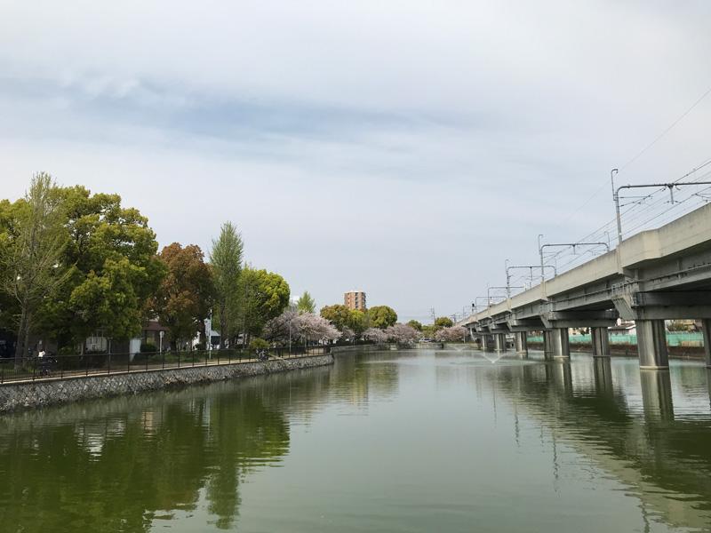 フィルムカメラアプリ「Huji Cam」で撮影した作例