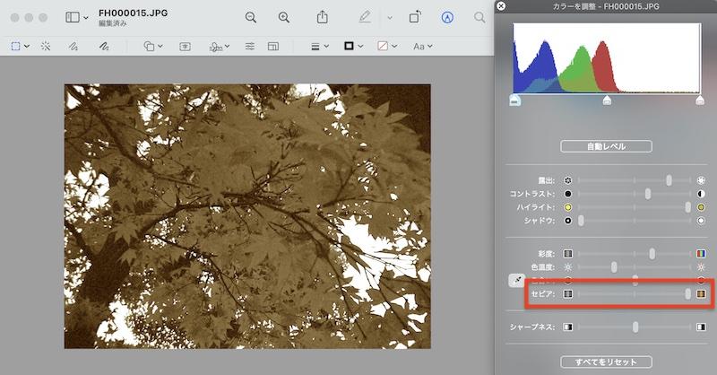「セピア」のつまみを右端まで持っていくと、モノクロ写真のようなノスタルジックな写真にも加工できます。